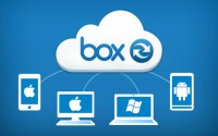 box revenue Jumps forty three% in Q2 On better Than expected boom