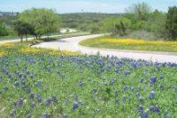 Tour of Texas: Ride-Hailing, CPRIT, Deep Space, Dean Kamen, START