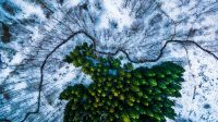 The Year's Most Beautiful Photos Taken By Drones