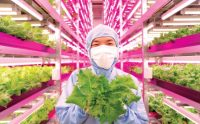 Six technologies changing the future of food