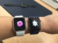 Apple Watch sales more than halved so far this summer