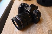 24 hours with the Olympus OM-D E-M1 Mark II