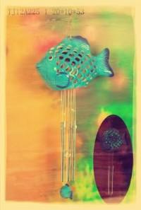 SOLAR Fish