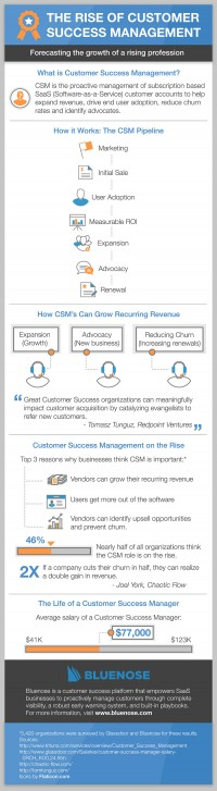 the upward push of shopper Success administration in a SaaS World [Infographic]