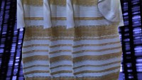 outdated folks noticed White And Gold, And extra Insights From A 23andMe learn about Of #TheDress
