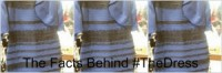 The info in the back of #TheDress: Social Media Generates Buzz & sales