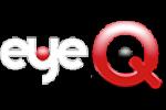 EyeQ Raises $1.2M for customized buying