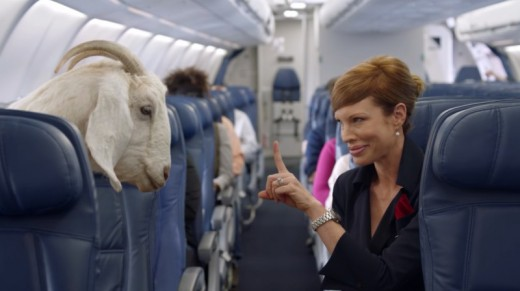 That crazy web Meme Delta safety Video Is On Its strategy to 2 Million Views