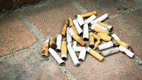 Do enormous Fines in fact reduce Cigarette Butt Litter?