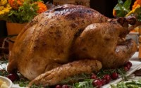 Serving Up A Bit Of Gratitude With Turkey