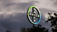 Bayer companions With Gene-enhancing Startup CRISPR To enhance New medication