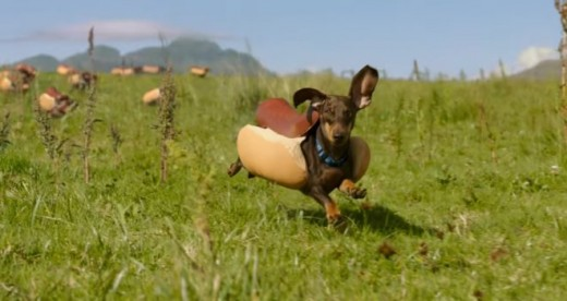 Heinz Ketchup Welcomes household Of Wiener dogs In lovable advert For super Bowl