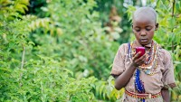 How Social Media Is remodeling hospital therapy within the developing World