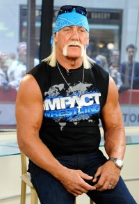 Hulk Hogan Making possible Jurors Uncomfortable In intercourse Tape Lawsuit