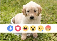 Reactions to the facebook Reactions [Study]