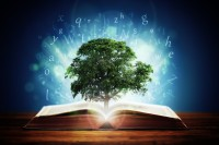 knowledge-driven storytelling: the intersection of numbers and narrative