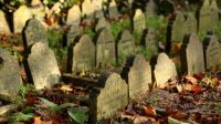 Who Will Manage Your Digital Assets When You Die?