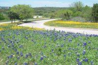 Tour of Texas: Querium, Spredfast, Valify, TMCx, SWRI, StemBioSys