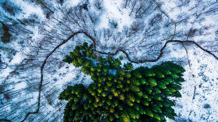 The Years Most Beautiful Photos Taken By Drones