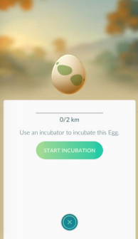 Pokemon GO Tips: How to Hatch the Collected Eggs?