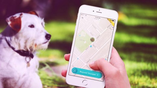 """This """"Uber For Dog Poop"""" App Is Definitely Fake–Sorry, Sharing Economy Enthusiasts"""