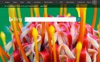 Bing Rewards Rebrands To Microsoft Rewards, Brings In Edge
