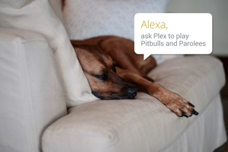 Plex for Alexa will get the party started with your voice