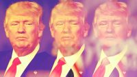 How The Twitterer-In-Chief Changed Digital Campaign Rhetoric