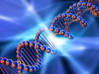 Scientists prove it's possible to build a DNA computer