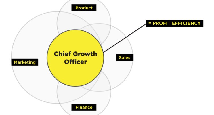 The Threat to the Traditional CMO – Will the Chief Growth Officer Replace the Chief Marketing Officer?