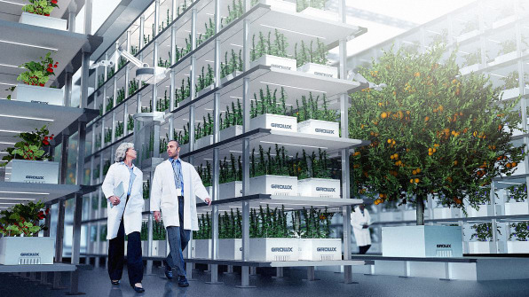 This Pot Company Is Cleaning Up The Weed Industry With Aeroponics | DeviceDaily.com