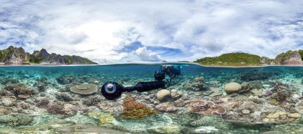 "Stop Right Now And Watch ""Chasing Coral"" To Understand What We've Done To The Ocean 