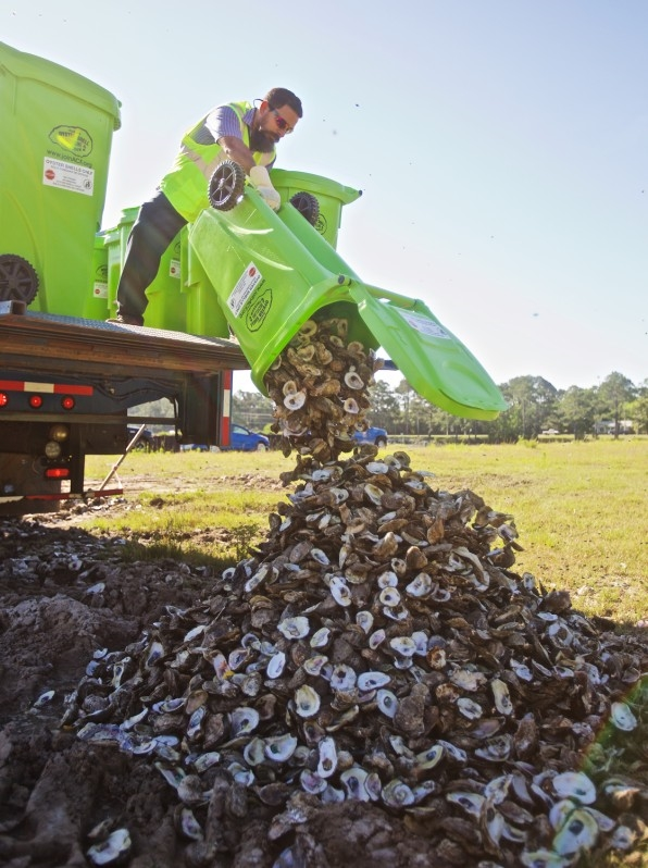 Restaurants Are Returning Their Empty Oyster Shells To The Ocean To Rebuild Decimated Reefs | DeviceDaily.com
