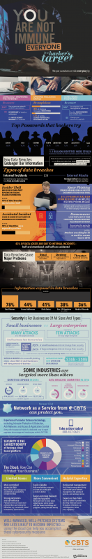 Network Security Is For All Businesses [Infographic]