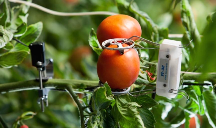 Farm to Fridge: an industrial IoT (IIoT) love story | DeviceDaily.com