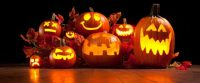 Halloween Foolery: Annual Income, Education Determine Searches