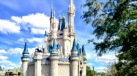 """Disney World removed """"Do Not Disturb"""" signs (probably for a disturbing reason)"""