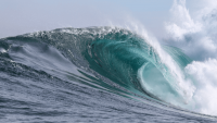 The Trade Desk launches its 'Next Wave'