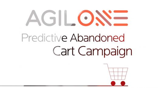 AgilOne, Criteo Partnership Links In-Store Purchase Data To Online Ads