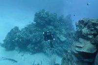 Hydrus VR camera brings immersive 8K video to the deep sea