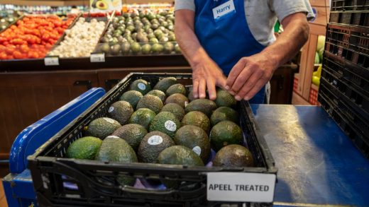 Apeel-coated produce is poised to take over grocery store shelves