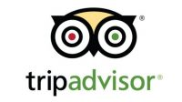 TripAdvisor Reduces Google Search, TV Ad Spend In Q3 2018