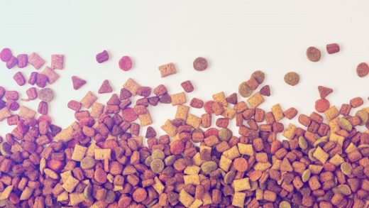 FDA dog food recall: 25 products to avoid due to toxic vitamin D fears