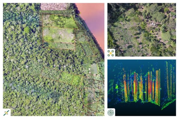 How drones and satellite images are measuring the forests used for carbon offsets | DeviceDaily.com