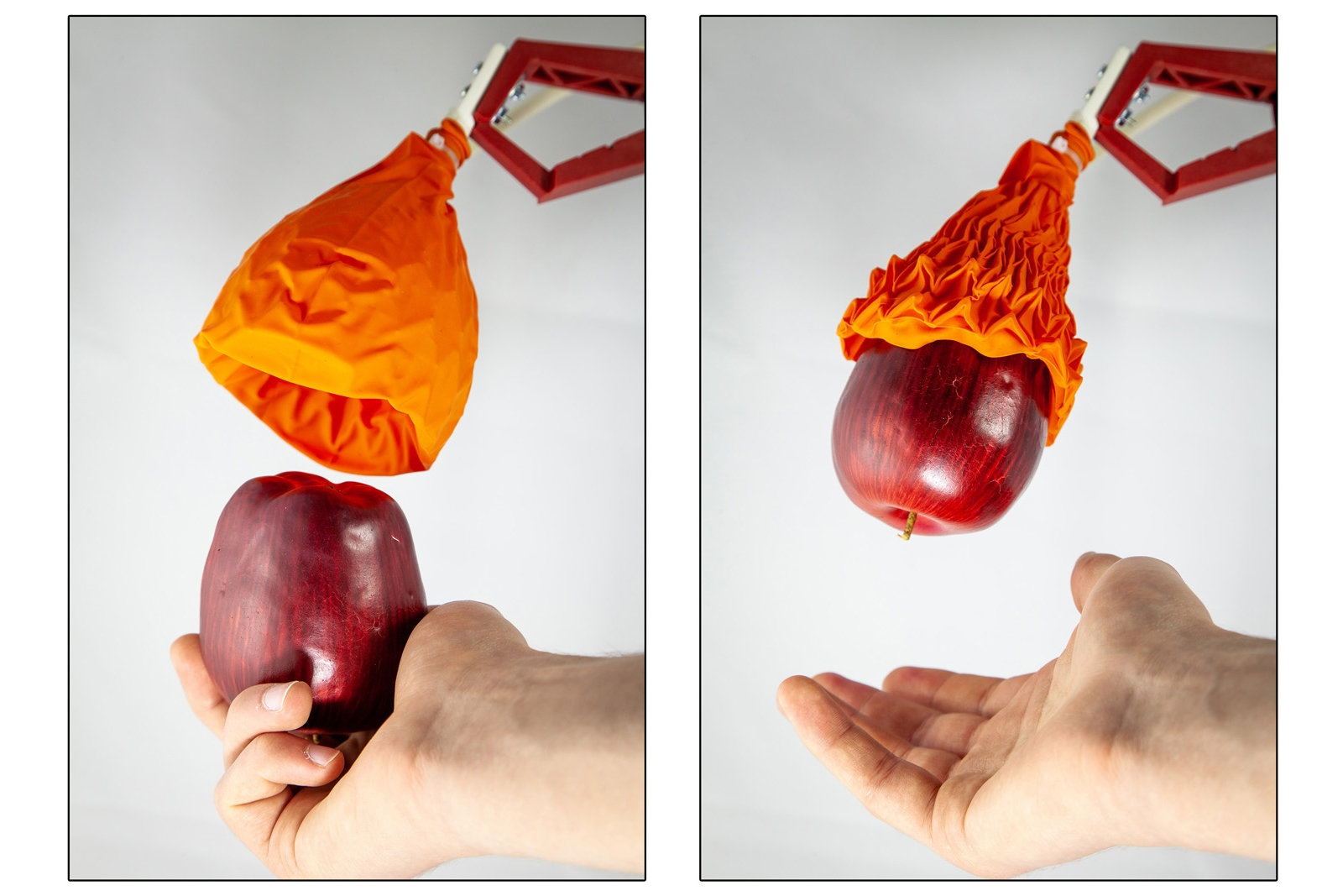 MIT robot's flytrap gripper can grab both fragile and heavy objects | DeviceDaily.com