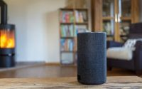 Streaming Music Leads Smart Speakers