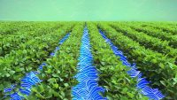 The shape of water: How agtech is making irrigation more efficient