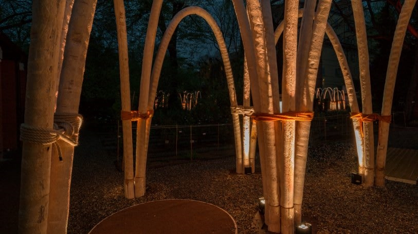 See the first architectural arches grown in a lab   DeviceDaily.com
