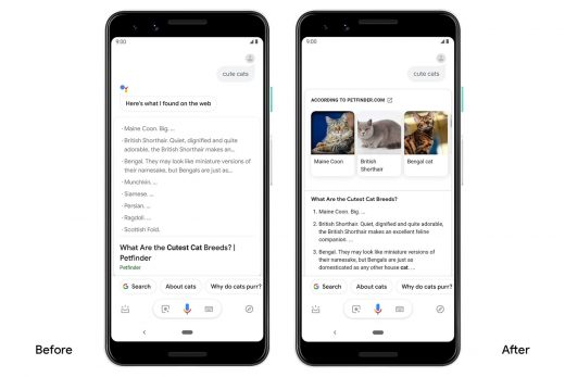 Google Assistant offers livelier search results on Android