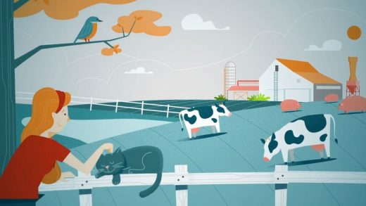 If you care about animals, should you should donate to shelters–or to stop industrial agriculture?